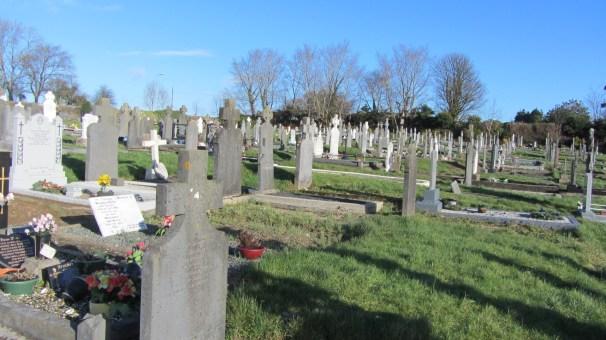 St. Mary's Cemetery Enniscorthy 2014-02-11 11.29.27 (13)