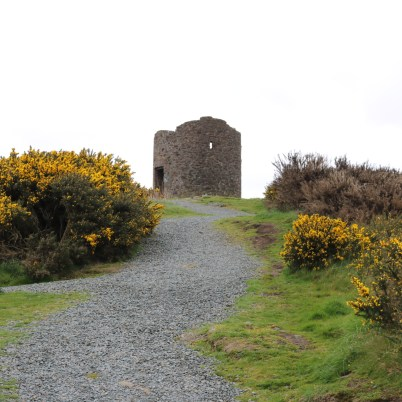 Vinegar Hill, Enniscorthy 2017-03-28 (15)