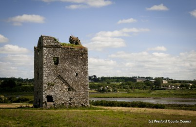 Clonmines Before Conservation 003