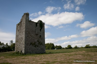 Clonmines Before Conservation 020