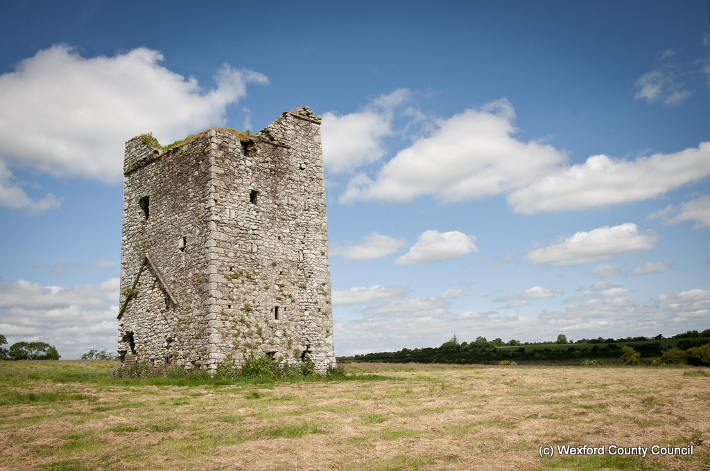 Clonmines Before Conservation 024
