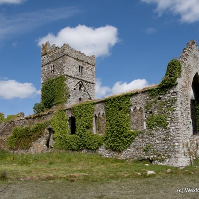 Clonmines Before Conservation 105