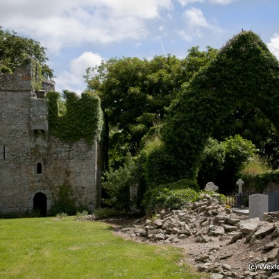 Clonmines Before Conservation 137