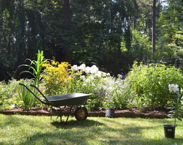 wheelbarrow in front of flowerbeds