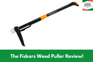 The Fiskars Weed Puller Review!