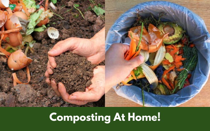 Composting At Home!