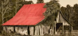 A Random Wake Forest Photo: Old Red Roof Dilapidated Barn