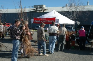 WFoL Fruit Tree Sale–March 7