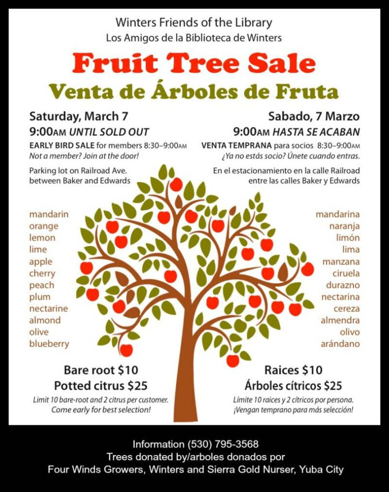 Winters Friends of the Library Fruit Tree Sale Poster 2015.