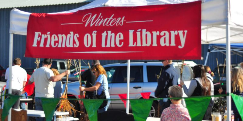 Winters Friends of the Library Tree Sale