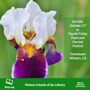 Winters Friends of the Library Iris Sale on October 27, 2017