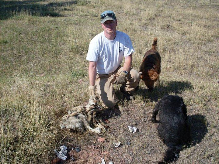 Coyote Trap Image 9 pc Jamie Olson_Wildlife Services