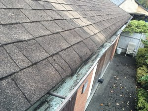 Heavy-moss-and-debris-in-gutter-AFTER
