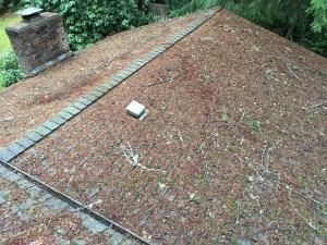 Heavy moss and debris on roof-BEFORE
