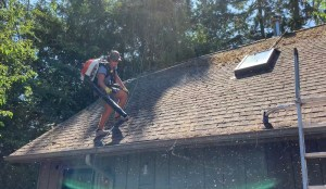 Tacoma-gutter-cleaning