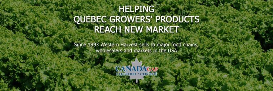 Helping Quebec Growers' Products Reach New Market