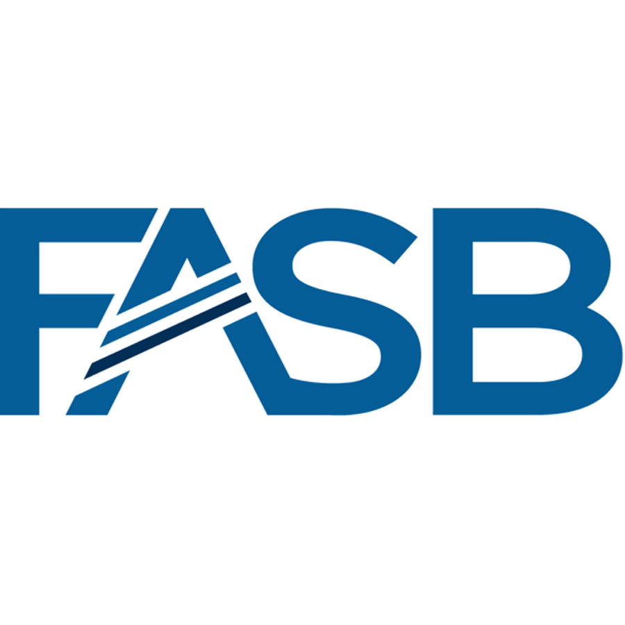 FASB Changes Mark-to-Market Accounting Rules
