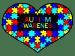 ADOS-G:自閉症スペクトラム障害の診断基準