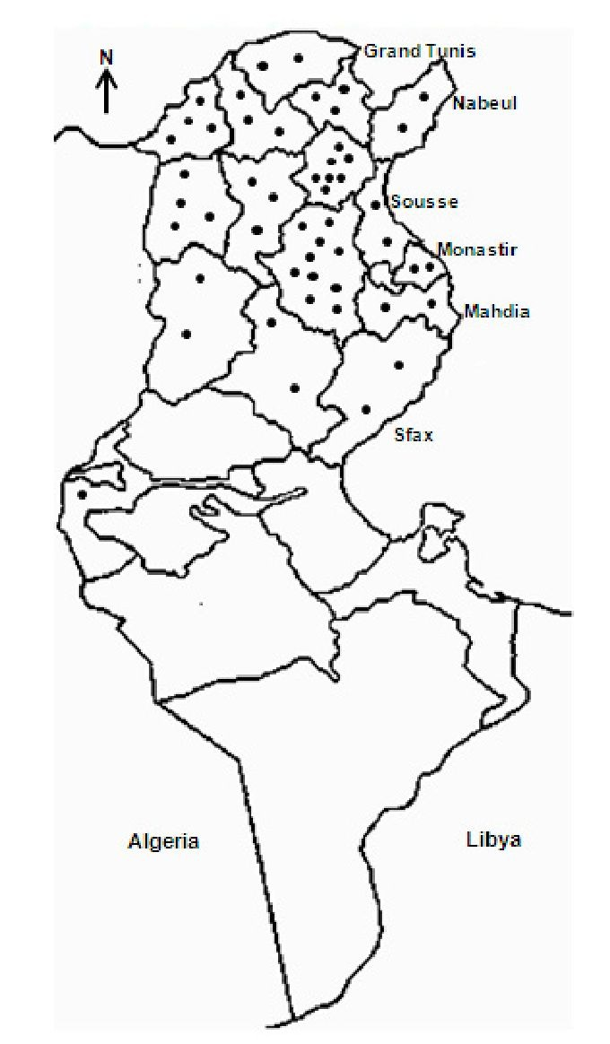 Actual distribution of visceral leishmaniasis in tunisia