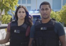 Hawaii Five-0 - 8.13 - What is Gone is Gone