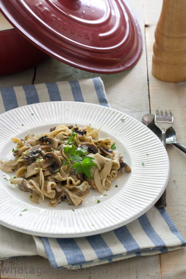 recipe for stroganoff essay Recipe_stroganoff_540 home – an essay by karen winkler review: luca chiara vegan wallet follow us recipes reviews.