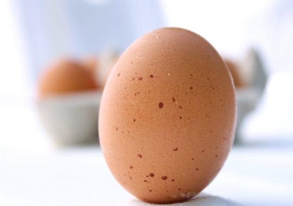 The incredible, edible egg
