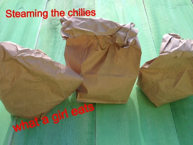 chiles in paper bag