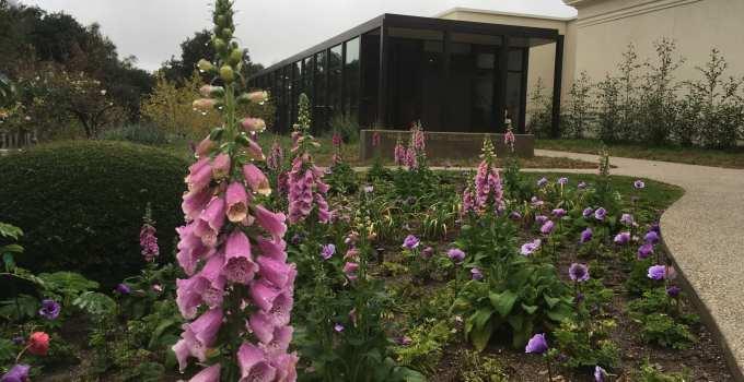 Huntington Library And Gardens In Pasadena