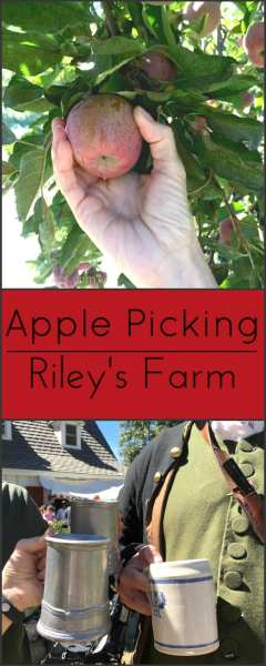 Apple Picking at Riley's Farm