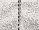 Two Pages from the Concentration Camp Project Diary