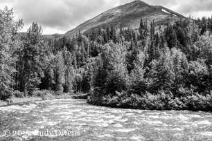 Kenai Mountains and Resurrection River in June