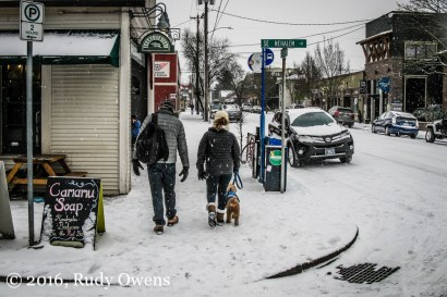Sellwood Snow Picture