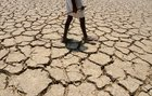 extreme global temperatures pushing human body close to thermal limits as climate change sees heatwaves sweep planet - Extreme global temperatures pushing human body 'close to thermal limits', as climate change sees heatwaves sweep planet