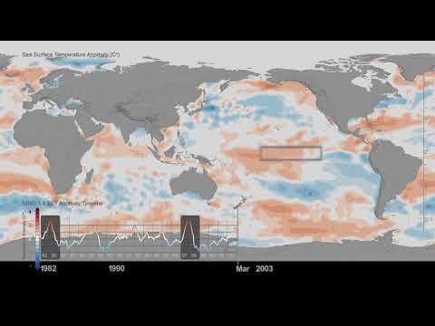 sea surface temperature anomaly timeline 1982 2017 - Sea surface temperature anomaly timeline: 1982-2017