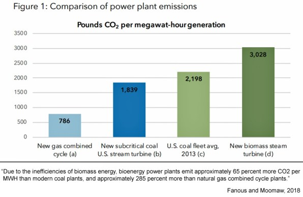 sweden gretas home is rapidly increasing co2 emissions with worse than coal biomass burning 3 - Sweden, Greta's Home, Is Rapidly Increasing CO2 Emissions With Worse-Than-Coal Biomass Burning