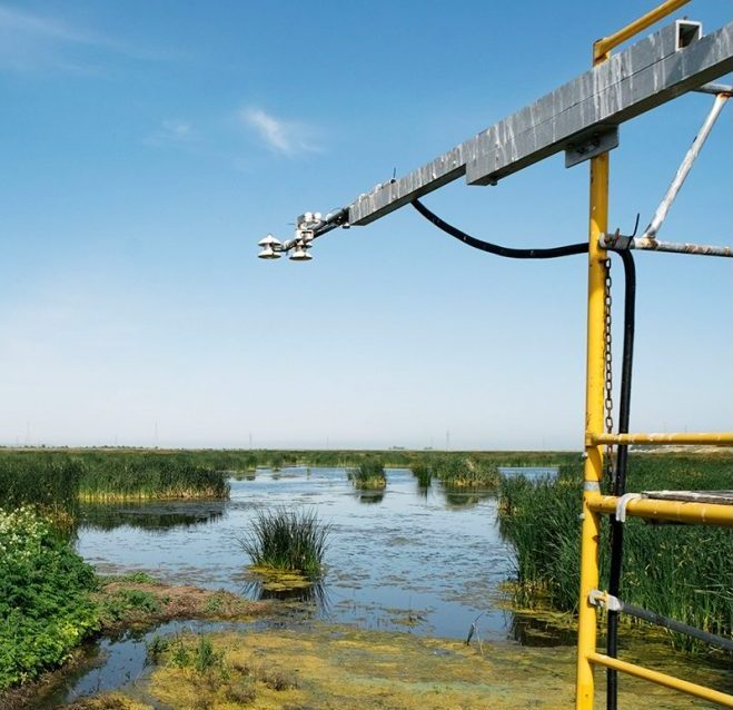 want to prevent californias looming flood disaster grow a marsh 3 - Want to prevent California's looming flood disaster? Grow a marsh.
