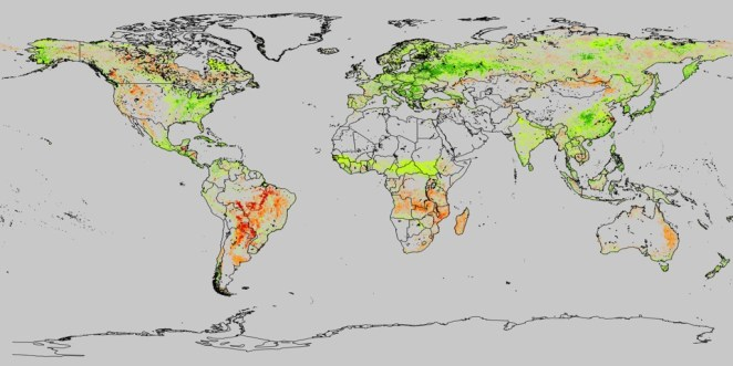 examining the viability of planting trees to help mitigate climate change 5 - Examining the Viability of Planting Trees to Help Mitigate Climate Change