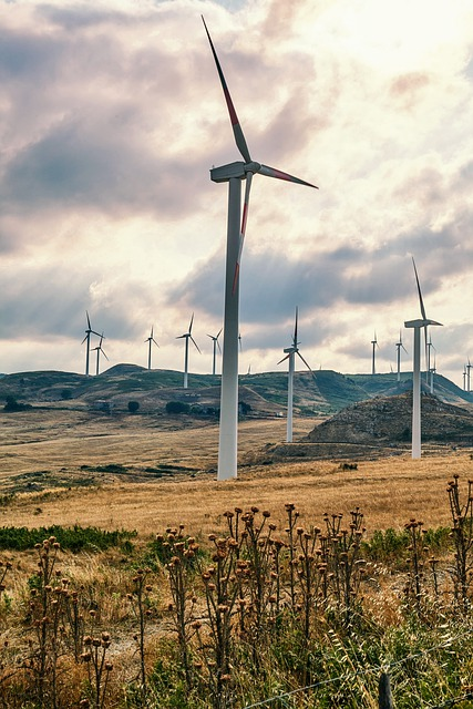 green energy tips that can reduce your spending 1 - Green Energy Tips That Can Reduce Your Spending