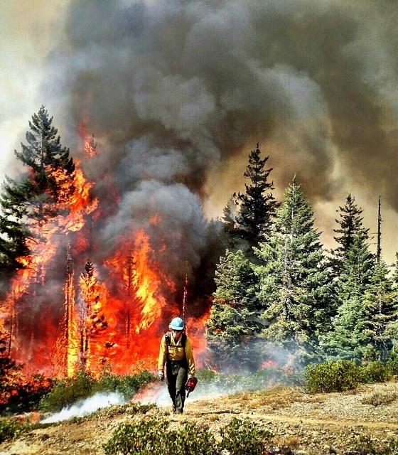 twice burned 9 - Twice Burned