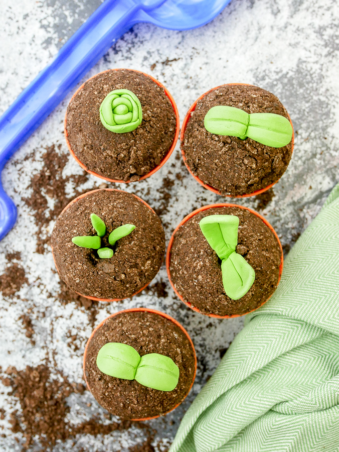 Seedling Cupcakes (in Plant Pots) recipe | What Charlotte Baked