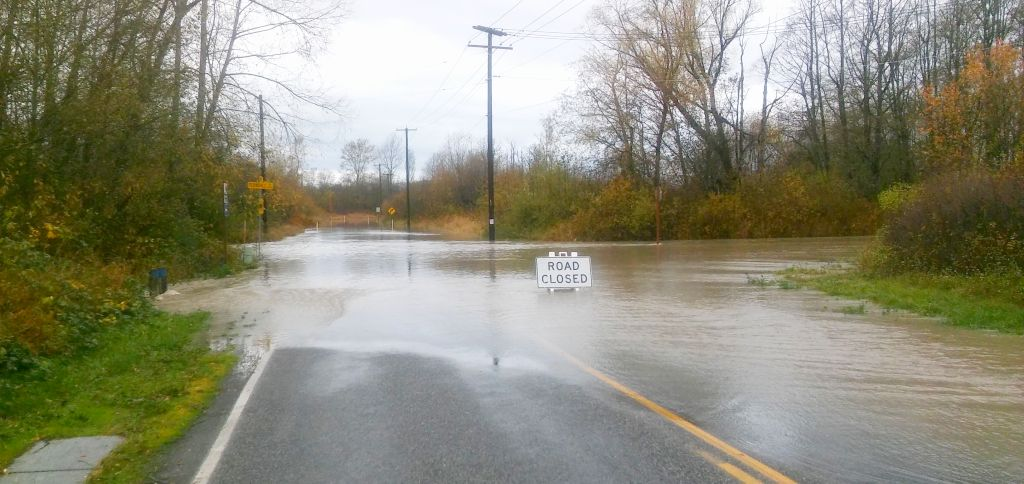 Ferndale Road and Marine Drive while Nooksack River level was at 17 feet (November 14, 2015) Photo: My Ferndale News