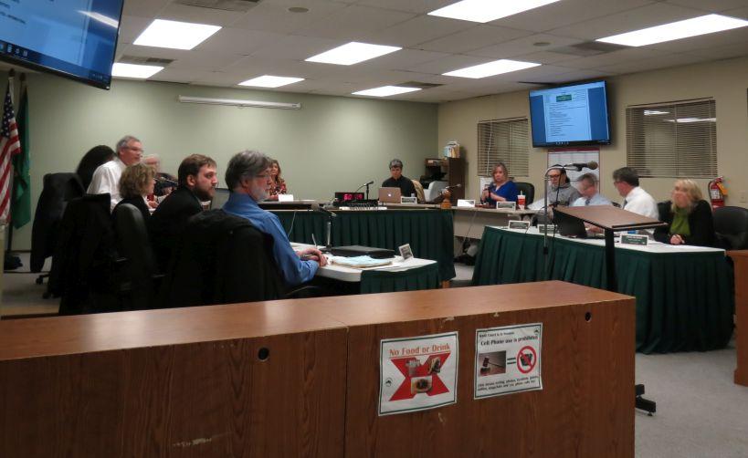 ferndale city council meeting 2017-01-17