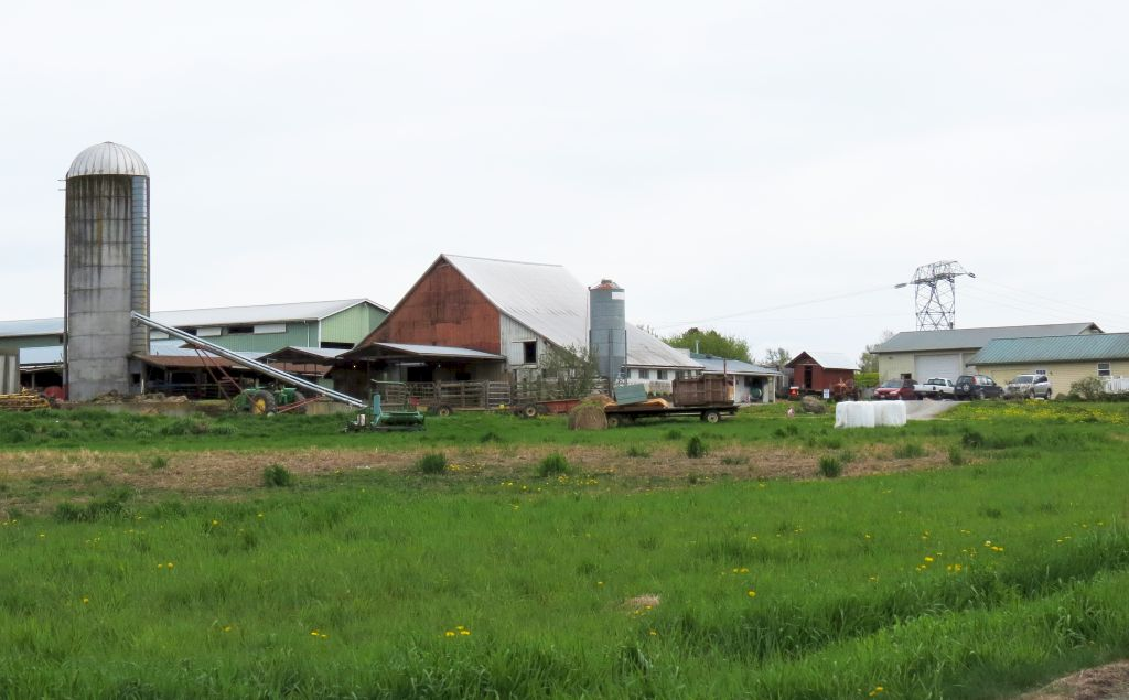 snookbrook dairy farm 2017-04-25