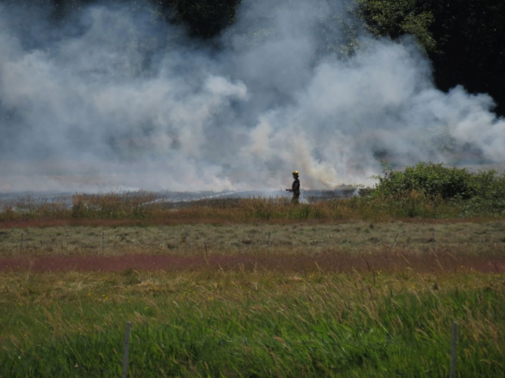 Firefighter directs a hose on an outside fire between Bay and Grandview Roads, east of Blaine Road 2017-07-14