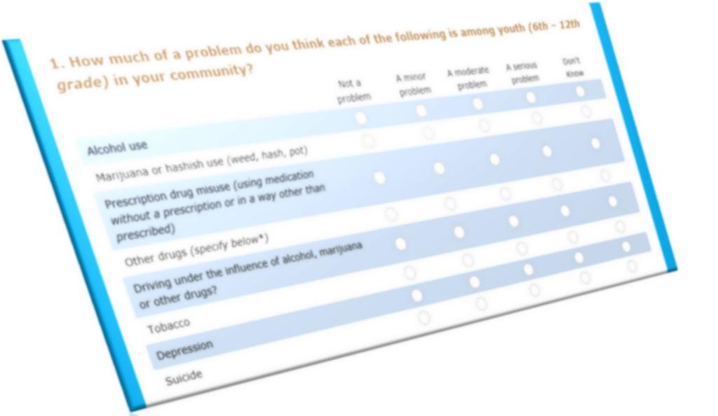 coalition survey screen grab