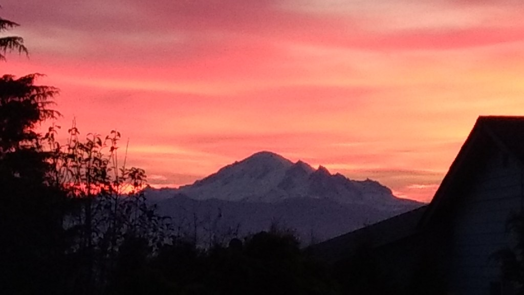 Sunrise (November 8, 2019). Photo: My Ferndale News