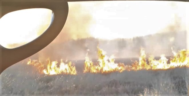Brush fire on Ferndale Road (April 7, 2020). Video still courtesy of a reader