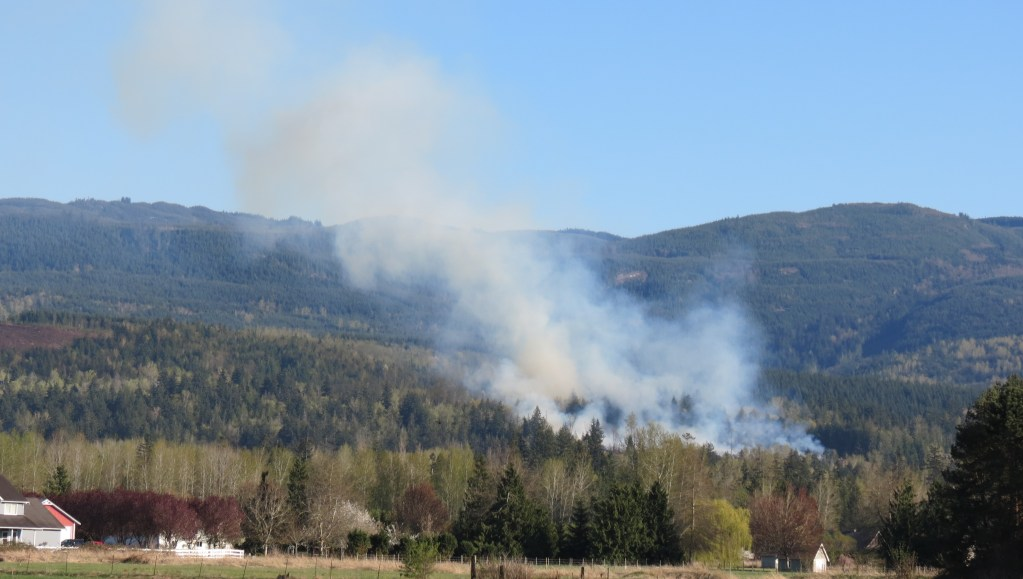 Smoke rises from an outside fire in the 3100 block of Mt Baker Highway (April 18, 2021). Photo: Whatcom News