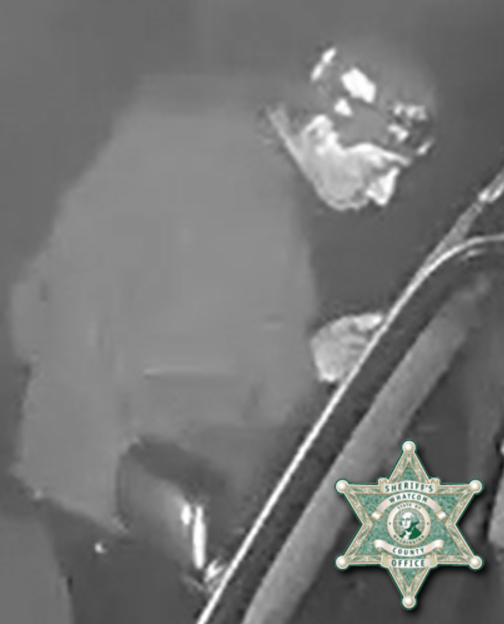 Still image from security video of a suspicious person seen going house to house checking vehicle doors (September 10, 2021). Source: WCSO