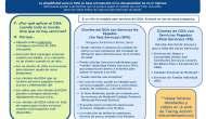 Servicios del DDA: ¿Por qué y cómo aplicar?